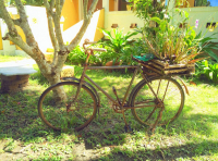 Аренда велосипеда на Чанге
